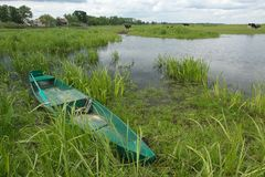 A green boat in flooded meadows stock photo