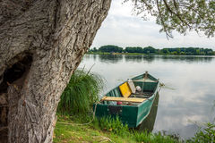 Green boat on the mantova lake Royalty Free Stock Photography