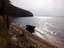 The green boat on the sandy coast of the lake. Among cane thickets Royalty Free Stock Images