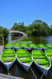 Green boats on the lake in summer in Japan. Stock Image