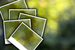 Green bokeh 2 Royalty Free Stock Photo