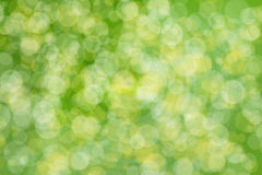 Green bokeh abstract light background Royalty Free Stock Image