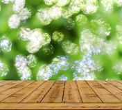 Green bokeh abstract light background, a lot forest bokeh with wood table Royalty Free Stock Images