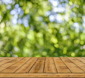 Green bokeh abstract light background, a lot forest bokeh with wooden table Royalty Free Stock Photography