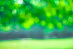 Green Bokeh background,Abstract backgrounds. Nobody, blurred. Summer Royalty Free Stock Photography