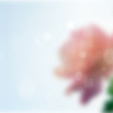 Green bokeh background Stock Image