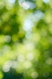 Green bokeh Stock Photo