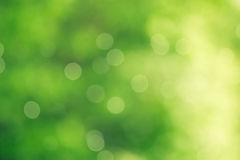 Green bokeh desktop wallpaper background Stock Images