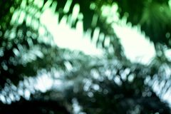 Green bokeh from leaves in nature background Royalty Free Stock Photos