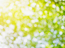 Green bokeh light for natural background Royalty Free Stock Images