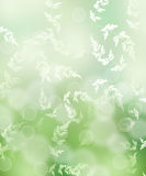 Green bokeh from nature with leaf Stock Photography