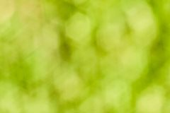 Green bokeh Royalty Free Stock Image