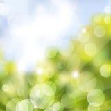 Green Bokeh summer Stock Image