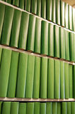 Green books on bookshelf. Dozens of green books lined up on a bookshelf Stock Images