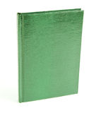 Green books in leather cover. Isolated on a white background, Snake Cover Stock Image