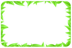 Green border made of leaves with space text Stock Photo