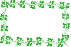 Green Border on White Stock Photography