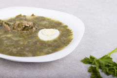 Green borsch with sorrel and boiled eggs Royalty Free Stock Photo