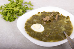 Green borsch with sorrel and boiled eggs.  Stock Photo