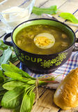 Green borsch with sorrel and egg. In the tureen stock photography