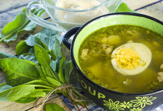 Green borsch with sorrel and egg. In the tureen stock photos