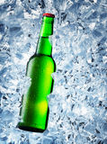 Green bottle of beer with drops Royalty Free Stock Image