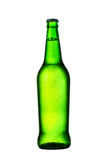 Green bottle of beer with drops on white background Royalty Free Stock Image