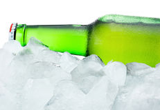 Green Bottle with Condensation cool in ice  on white background Royalty Free Stock Photo