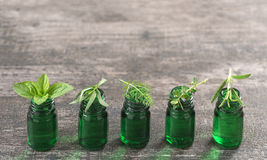 Green Bottle of essential oil with Fresh herbs and medicinal plants Royalty Free Stock Image