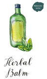 Green bottle of herbal balm with green leaves. Hand drawn - watercolor vector Illustration Royalty Free Stock Photography