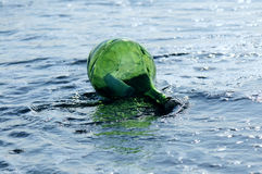 Green bottle with the lette Stock Photos