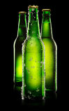 Green Bottles of beer Stock Photography