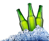 Green bottles in ice Royalty Free Stock Image