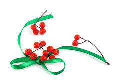 Green bow and mountain ash berries Stock Photo