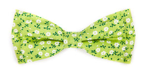 Green bow tie with a pattern with summer flowers Royalty Free Stock Photos