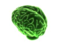 Green brain Royalty Free Stock Image