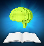Green brain over is blank white magazine Stock Photography