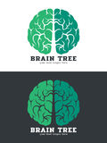 Green Brain tree logo vector art design isolate on white and dark background Stock Image