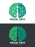 Green Brain tree logo vector art design isolate on white and dark background Stock Image
