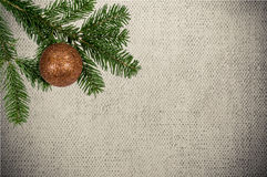 Green branch with christmas ball on canvas background Royalty Free Stock Photo