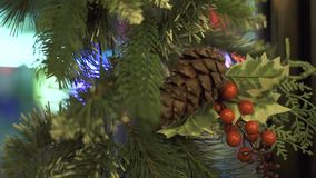 Green branches Christmas tree with cone and red berries on glass window close up. New Year decoration fir wreath, cone. And red berries for celebration holiday stock footage