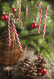 Green Branches of Fir with Christmas Decorationin in Basket Royalty Free Stock Photos