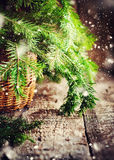 Green Branches of Fir Tree on wooden table. Drawn Snowfall Royalty Free Stock Photography