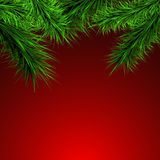 Green branches on a red  background, royalty free stock photo