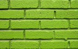 Green Brick Wall Stock Photography