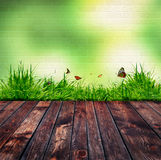 Green brick wall and green grass Stock Photo