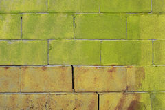 Green brick wall. Green painted brick wall background Royalty Free Stock Photos