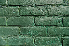 A green brick wall painted Stock Images