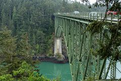 Green bridge crossing to a coniferous forest high above stock photos