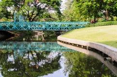Green bridge over swamp. In the garden Stock Image